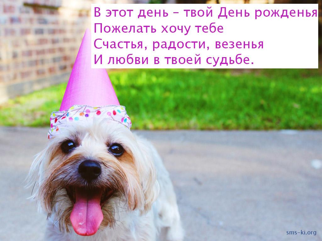 Открытка - В твой День рожденья
