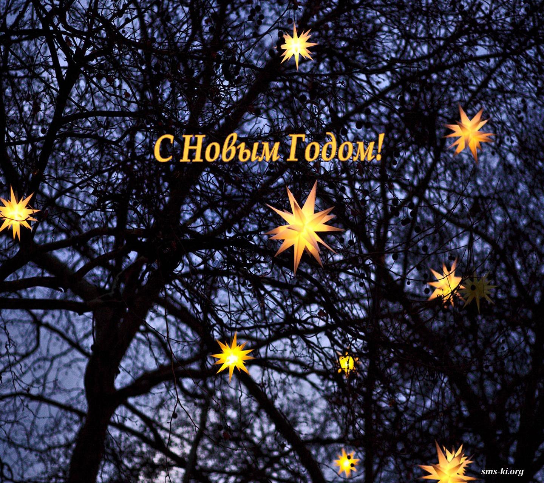Обои на рабочий стол - С новым годом деревья со звездами