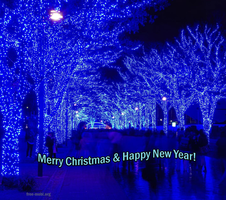 Обои - Рождественская ночь