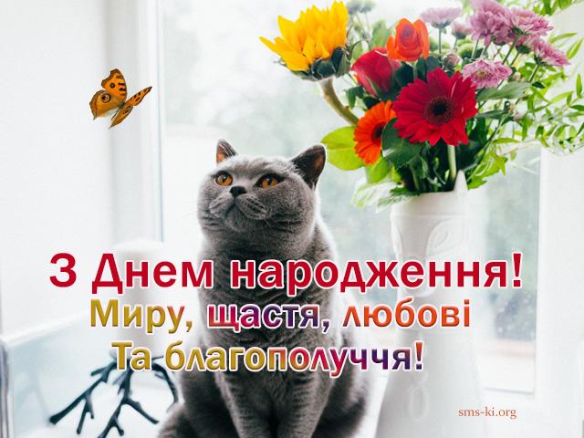 Листівка - З днем народження картинка з котом і квітами