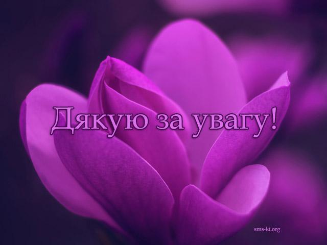 Листівка - Дякую за увагу фіолетова листівка
