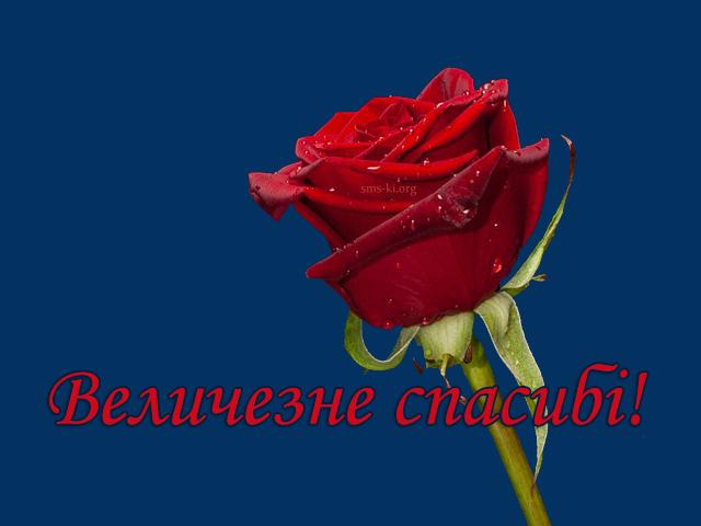 Листівка - Величезне спасибі картинка з трояндою