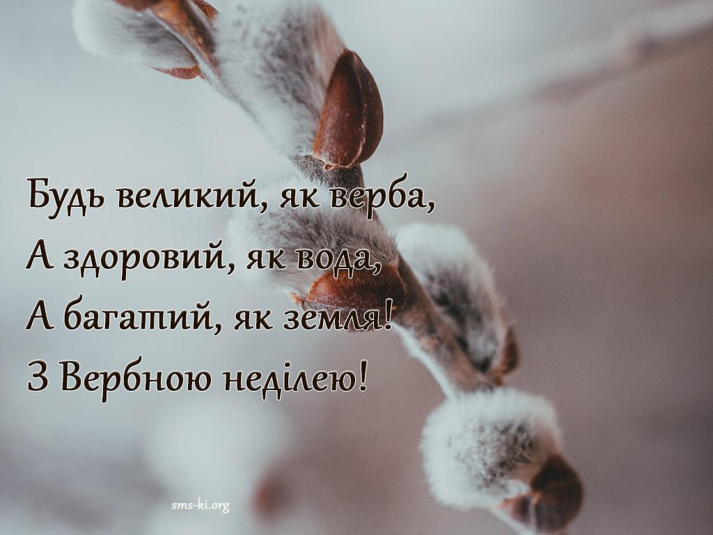Листівка - Будь великий як верба - привітання