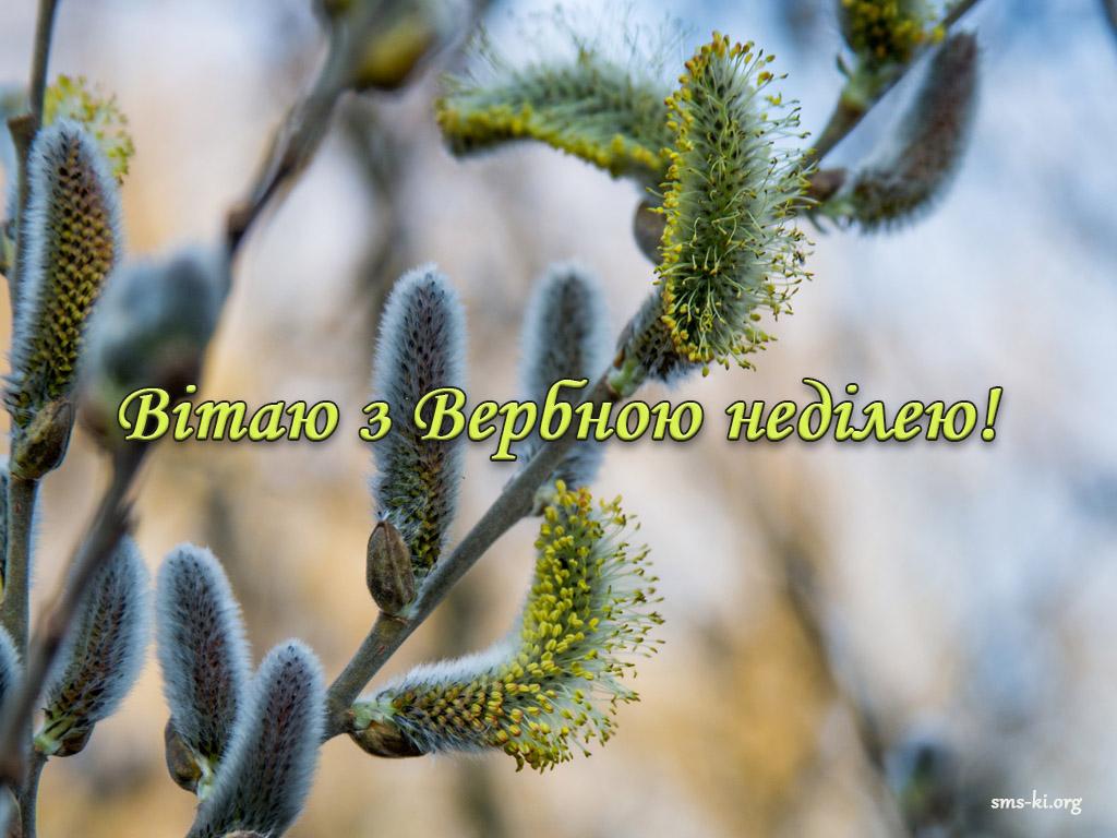 Листівка - Вітання з Вербною неділею