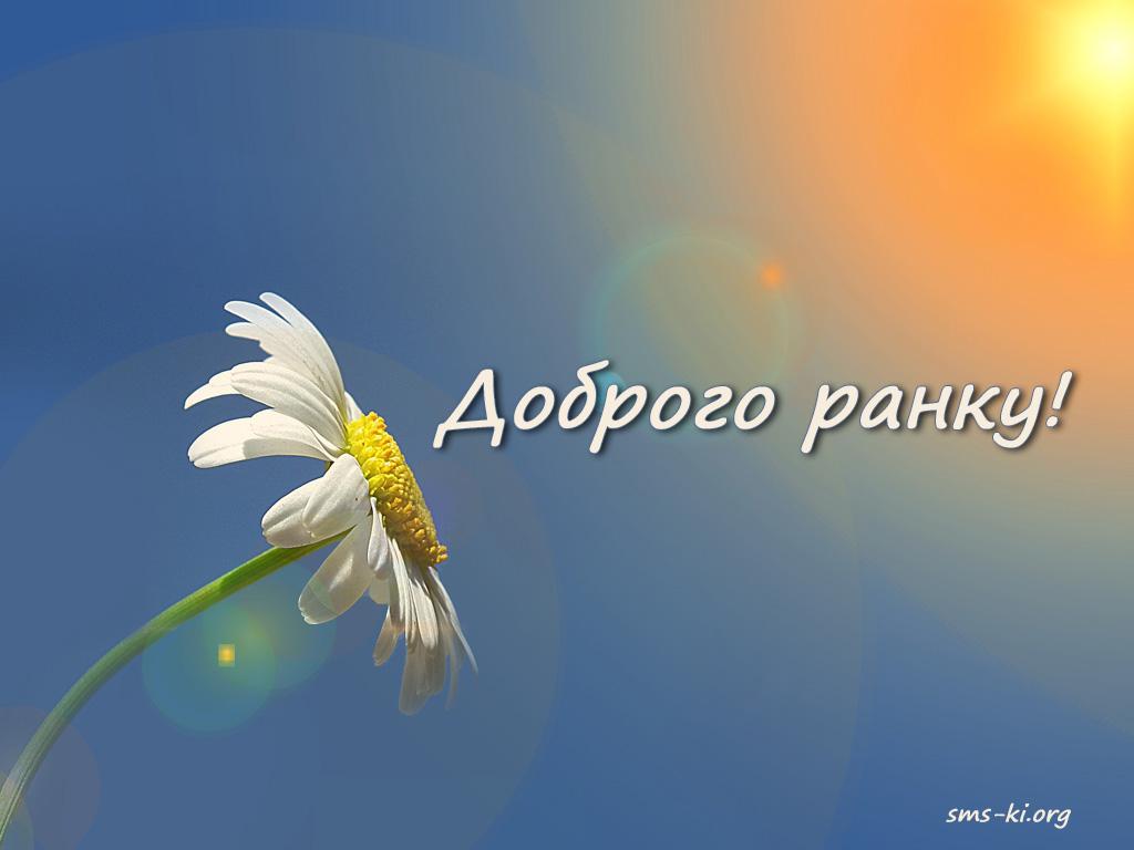 Листівка - Доброго ранку картинка