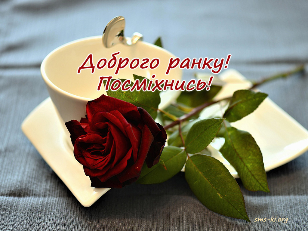 Листівка - Доброго ранку картинка з трояндою