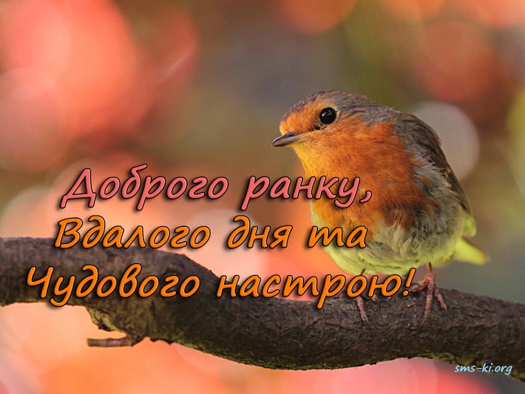 Листівка - Листівка з побажанням доброго ранку