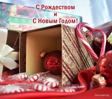 Открытка Новогодний безпорядок
